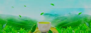 Có hay không khi người uống trà không biết về trà ?